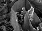 Volkenkunde Zwart Wit Buenos Aires Collectie Boombewoner Jeroen Spijker
