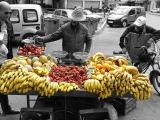 fruitstal